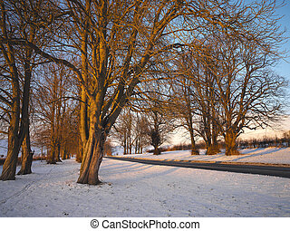 Country Road in Winter - Yorkshire - England