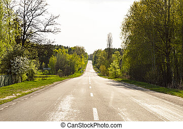 Country road on a sunny day