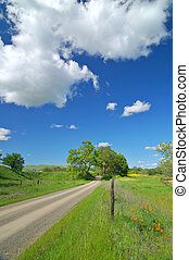 Country Road - Road in the Country