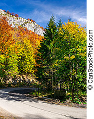country road through forest in autumn. high cliff on top of...