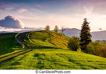 country road through grassy hill at sunset. lovely landscape...