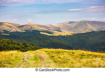 country road through grassy hillside. lovely summer scenery...