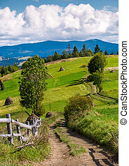 country road through rural hill of Carpathians. haystacks...