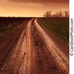Country road through the fields, tinted photo