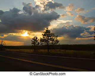 Country Road with the Sun Setting Behind a Corn Field