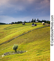 Country scene with wooden huts on the hill and sky rain