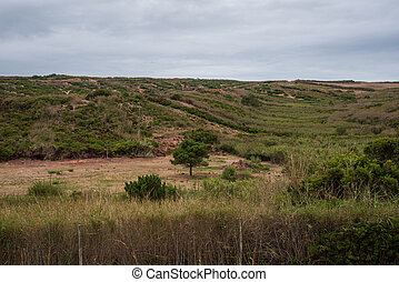 Country side view in Torres Vedras Portugal