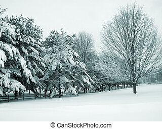Country Snow - This is a greenish blue duo-tone shot of a...