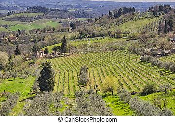 Countryside and chianti vineyards near San Gimignano in Tuscany, Italy