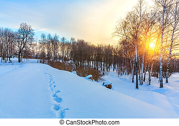 Countryside at winter
