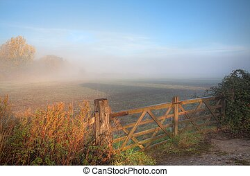 Countryside background with gate - Misty countryside scene...