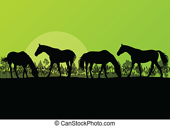 Countryside farm horses silhouettes in wild nature mountain...