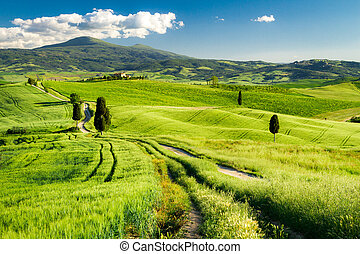 Countryside footpath in Tuscany