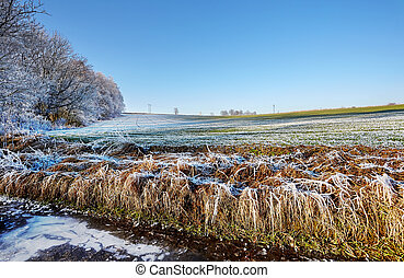 Countryside frozen field with ice trees and hoarfrost