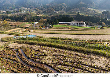 Countryside in Japan at autumn