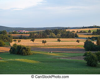 Countryside in the evening