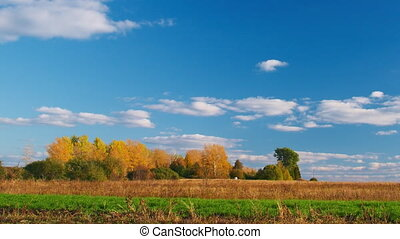 Countryside landscape panning - White clouds flying on blue sky over autumn forest and field