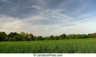 Countryside landscape timelapse