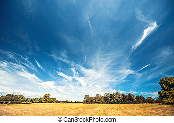 Countryside landscape with a dramatic blue sky