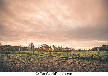 Countryside landscape with a wired fence
