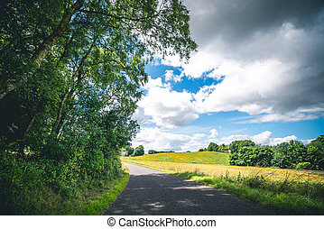 Countryside landscape with an asphalt road