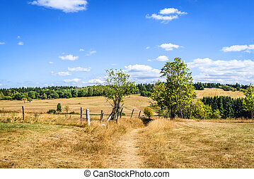 Countryside landscape with dry fields