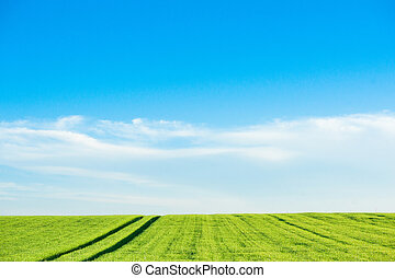 Countryside landscape with field tracks