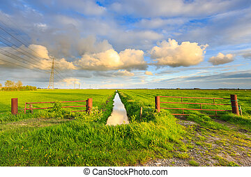 Countryside landscape with grassland