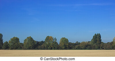 Countryside near Cambridge