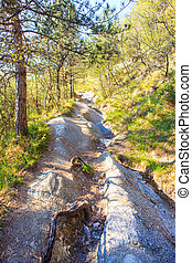 Countryside path - View of Countryside path in the Friuli...