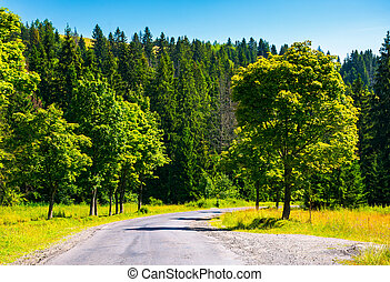 countryside road through forest. beautiful landscape on...