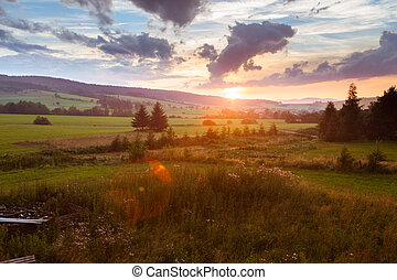 Countryside summer landscape with sunset. Cloudy sky, trees and fields