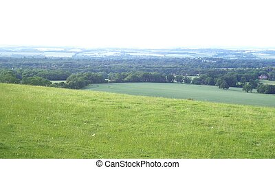 Countryside - the view from Combe hills, (Berkshire, England...
