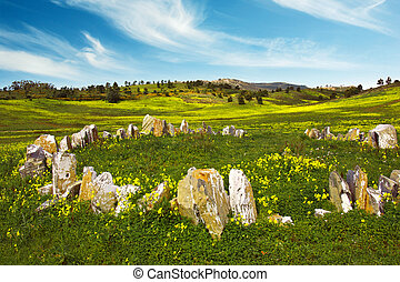 Countryside with Stones