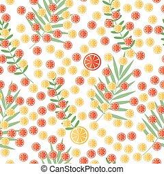 coupé, tranches citron, citrus, feuilles, leaves., exotique, fond, orange, blanc