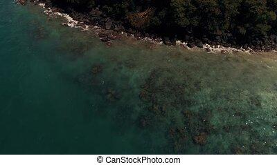 coup, île, corail, hauteur, entourer, bourdon, coraux, thaïlande, 100, vue, meters.