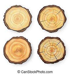 vecteur coupure b che bois anneaux section arbre croix texture bois noir ic ne isol. Black Bedroom Furniture Sets. Home Design Ideas
