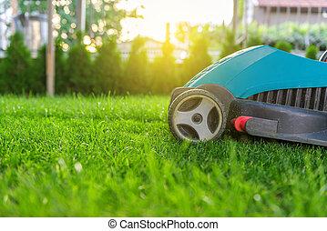 Tondeuse parc pelouse parc uniforme herbe public for Tarif tondeuse a gazon