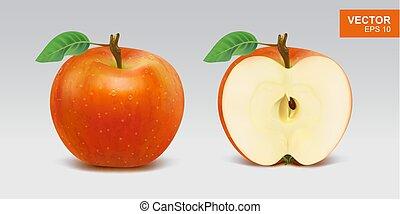 couper, pomme, illustration, réaliste, vecteur, pommes, moitié, icon., entier, rouges