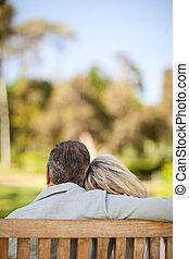 couple, banc, personnes agées, séance