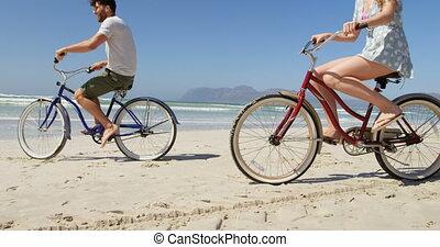 couple, bicyclette voyageant, ensoleillé, plage, jour, 4k