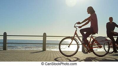 couple, bicyclette voyageant, promenade, 4k