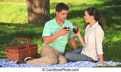 couple, boire, vin rouge