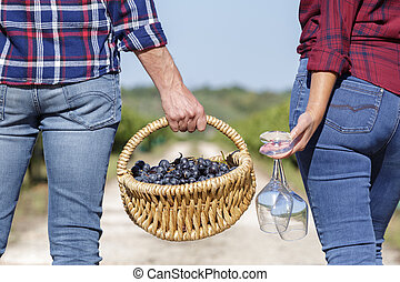 couple carrying a basket of grapes in vineyard