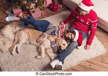couple, chapeaux, chien, santa