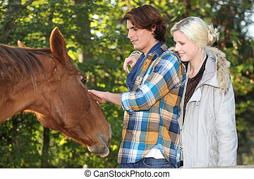 couple, cheval, caresser