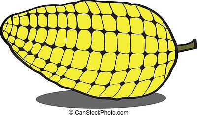 couple corncob vector