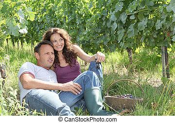 couple, délassant, dans, vignoble