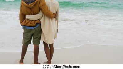 couple, debout, africaine, vue, arrière, américain, 4k, ensemble, plage