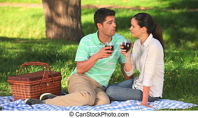 Couple drinking wine on a picnic